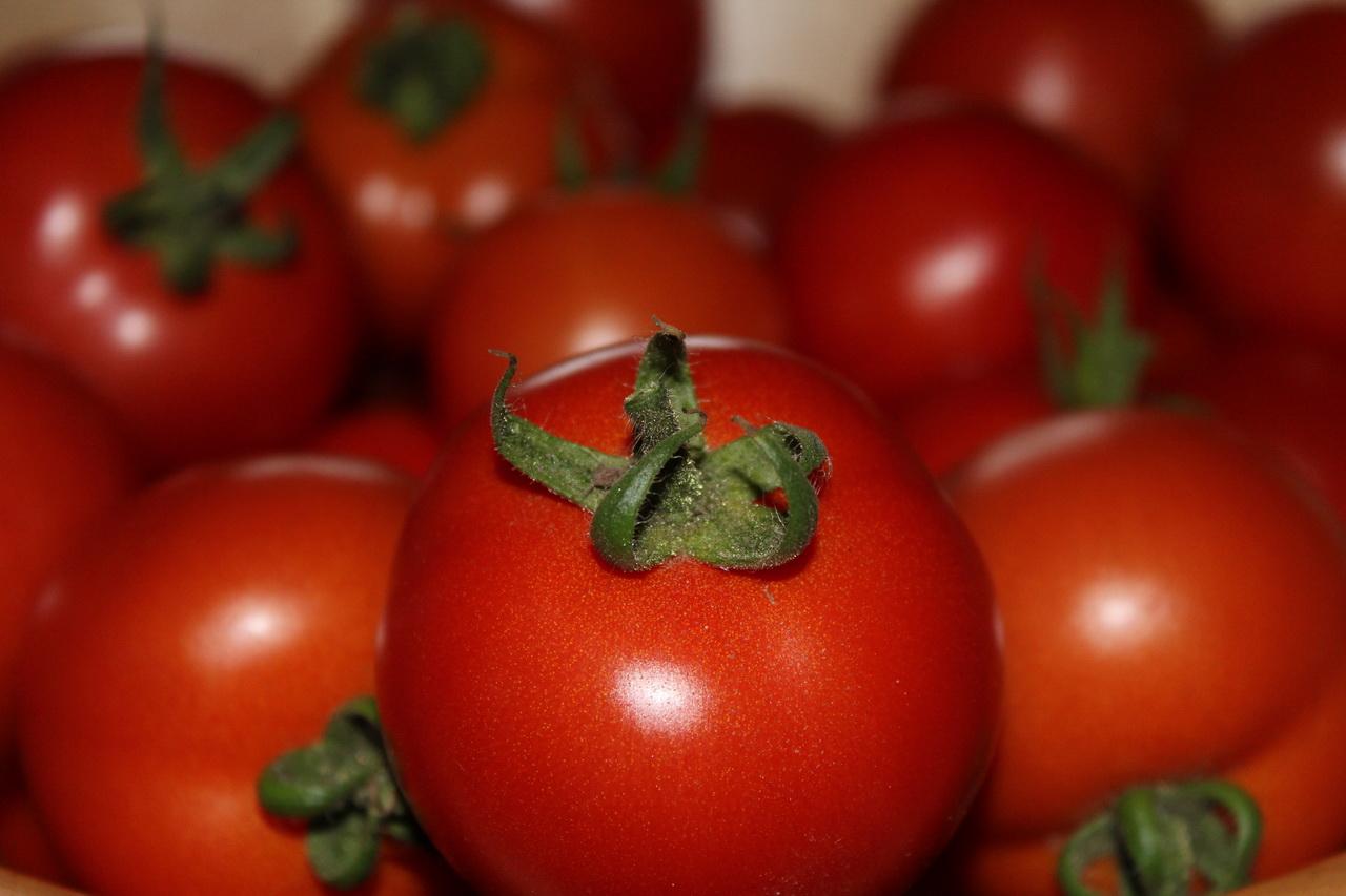 Дота, помидоры картинки